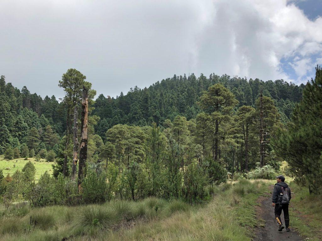 Nevado - Valle - Nevado