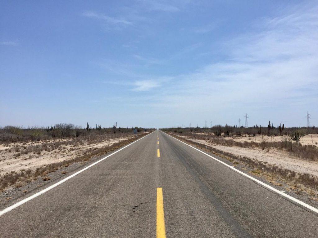 Marlín Rayado en la Baja